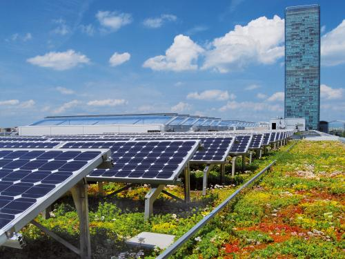 Solaranlagen München gründach und solar zinco