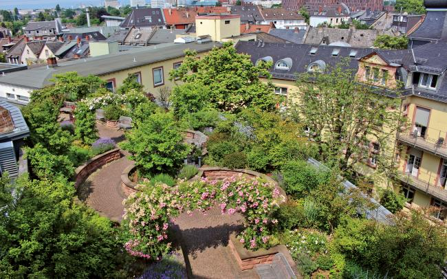 Bird's eye view onto the roof garden
